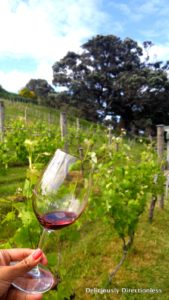 Syrah & vineyards at Kennedy Point Waiheke Auckland