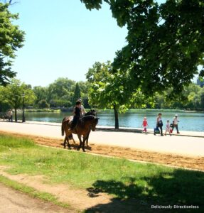 Hyde Park Horse riding