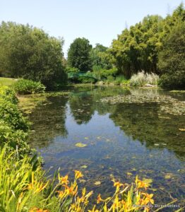 Latour-Marliac Garden France
