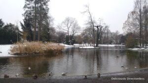 Vienna Stadtpark waterbody